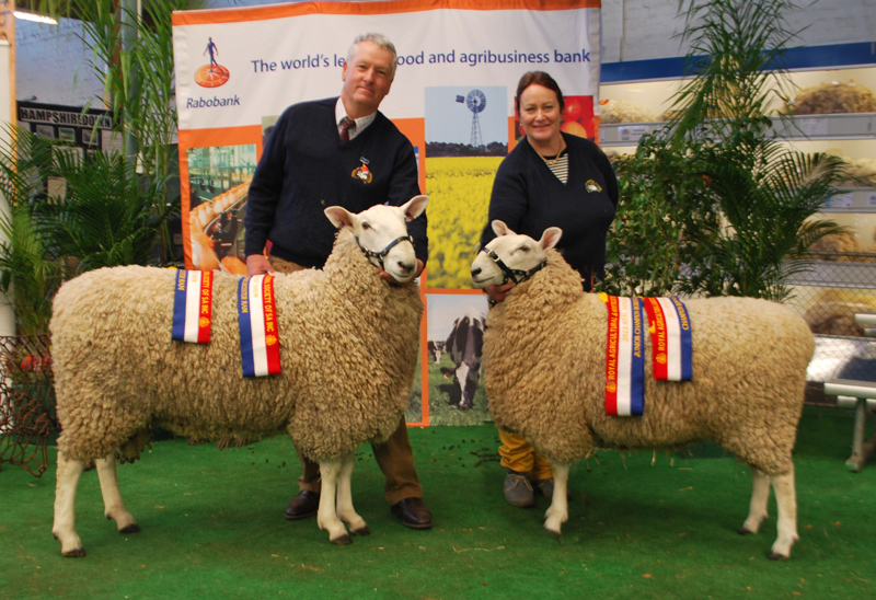 Champion Ram and Champion Ewe, Royal Adelaide Show 2013