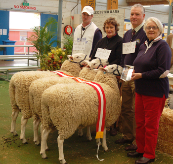 Patemoster British Breed Interbreed Group, 2010 Royal Adelaide Show