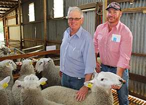 Chris England purchased 14 rams at the 2015 Coolawang Ram Sale