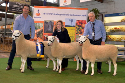 Coolawang winning Beeders Group, 2017 Royal Adelaide Show