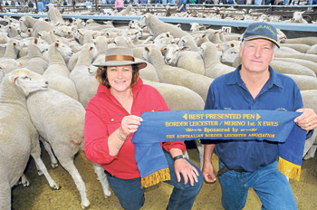 Best presented pan at the 2011 Naracoorte First Cross Ewe sale