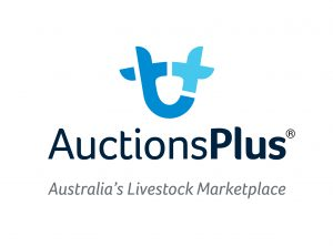 Auctions Plus Logo Tagline T Stacked